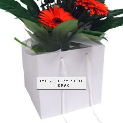 250mm White Florist Paper Carrier Bags