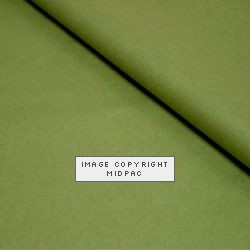 Luxury Moss Tissue Paper