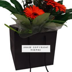 190mm Black Florist Paper Carrier Bags