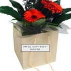 190mm Cream Florist Paper Carrier Bags
