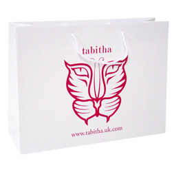 400mm Laminated Printed Paper Carrier Bags
