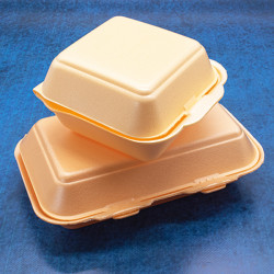 General Polystyrene Meal Boxes HB9