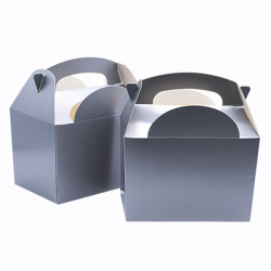 Silver Children's Meal Boxes