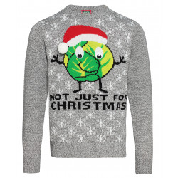 Sprouts Not Just For Christmas Jumper