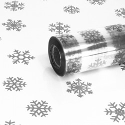 Silver Snowflake Film Roll