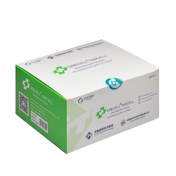 Biodegradable Disinfectant Wipes