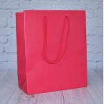 Raspberry Matt Paper Bags