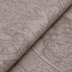 Globe Patterned Tissue Paper