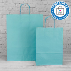 220mm Turquoise Twisted Handle Paper Carrier Bags