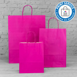 180mm Fuchsia Twisted Handle Paper Carrier Bags