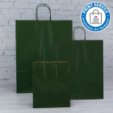 320mm Dark Green Twisted Handle Paper Carrier Bags