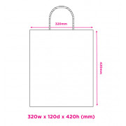 320mm White Twisted Handle Paper Carrier Bags