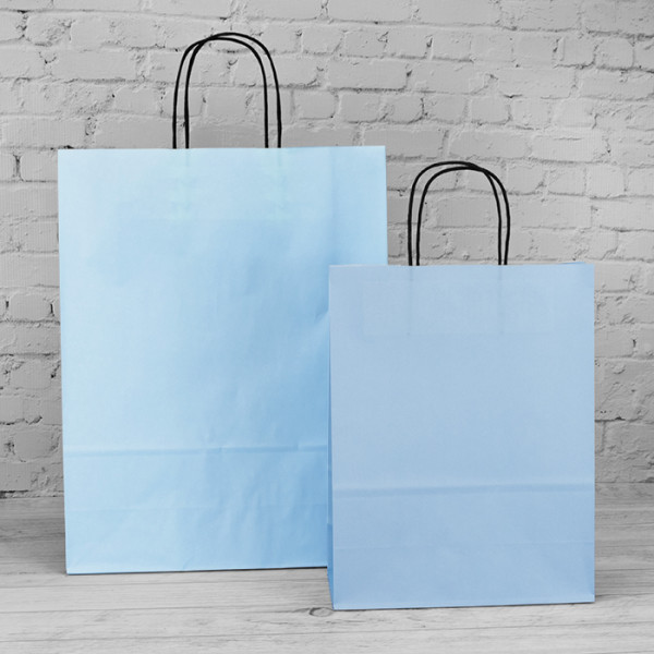 240mm Baby Blue Twisted Handle Paper Carrier Bags