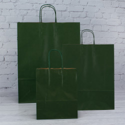 180mm Dark Green Twisted Handle Paper Carrier Bags