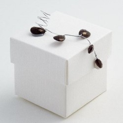 White Square Favour Boxes