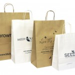 Over Printed Paper Carrier Bags Simple Logo Only