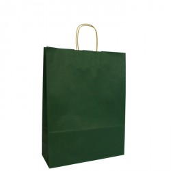 220mm Dark Green Twisted Handle Paper Carrier Bags