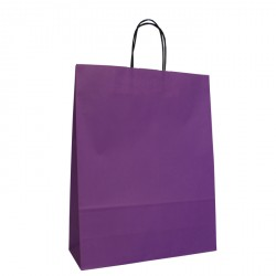220mm Violet Twisted Handle Paper Carrier Bags