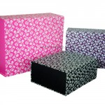 Patterned Magnetic Boxes