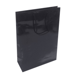 250mm Black Gloss Paper Carrier Bags