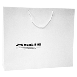 500mm Laminated Printed Paper Carrier Bags